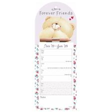 Forever Friends Week-to-View Magnetic Calendar 2020