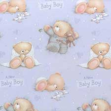 New Baby Boy Forever Friends Gift Wrap