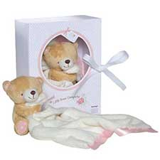 Little Bear Forever Friends Pink Comforter in Display Box