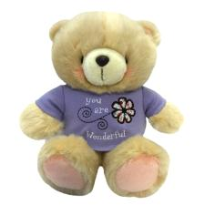 "10"" You are Wonderful T Shirt Forever Friends Bear"