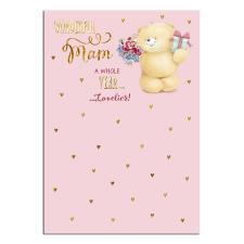 Wonderful Mam Forever Friends Birthday Card