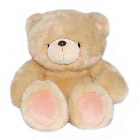 "10"" Plain Forever Friends Bear"
