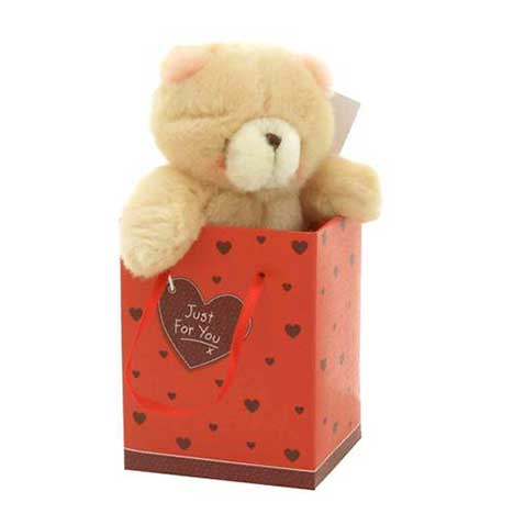 "3"" Bear in Love Bag Forever Friends Bear"