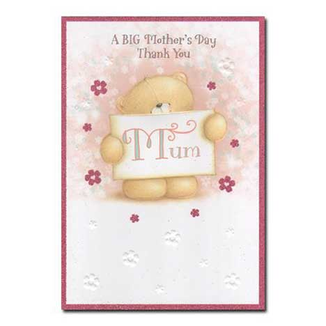 Mum a Big Thank You Mothers Day Card