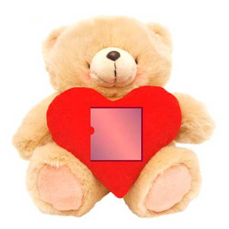 "10"" Love Photo Heart Forever Friends Bear"