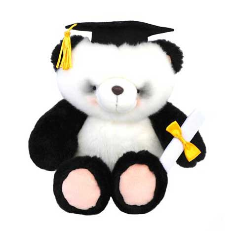 "10"" Graduation Panda Forever Friends Bear"