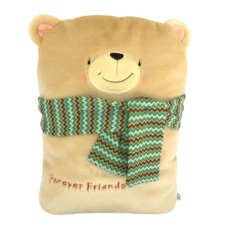 Forever Friends Bear with Scarf Cushion Size