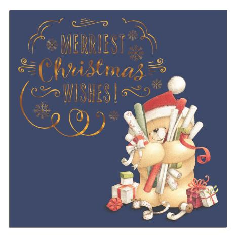 Merriest Christmas Forever Friends Christmas Card